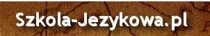 Tłumacz francuskiego , szkoła jezyków obcych Kraków e-learing, tłumaczenia francuski Kazania i homilie